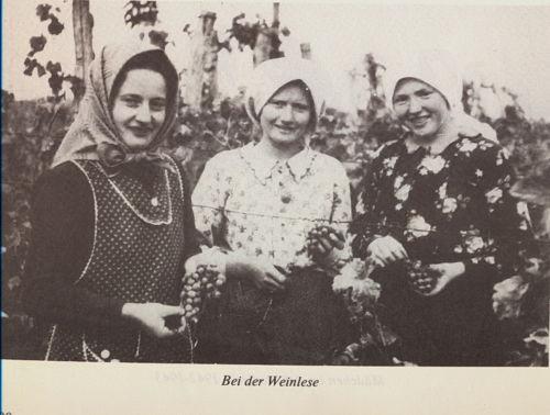 Bulkes1786-1944-foto-028
