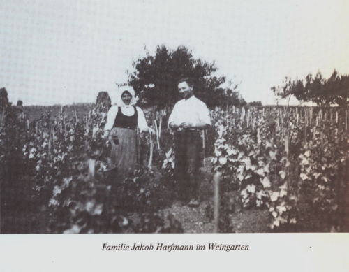 Bulkes1786-1944-foto-033