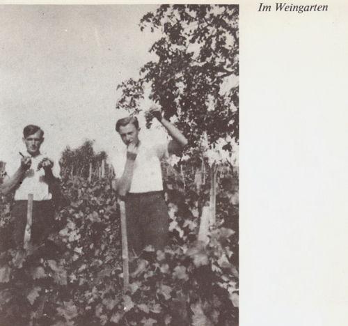 Bulkes1786-1944-foto-034