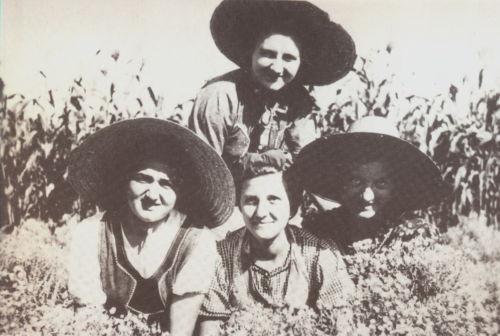 Bulkes1786-1944-foto-049