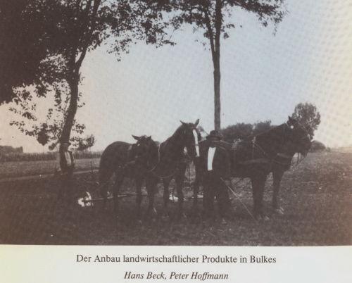 Bulkes1786-1944-foto-065