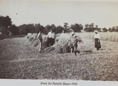 Bulkes1786-1944-foto-075