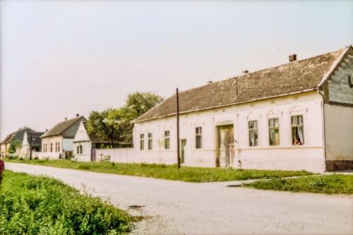 Ćirpanova sa ugla 29.novembra ka Đ.Salaja - desna strana