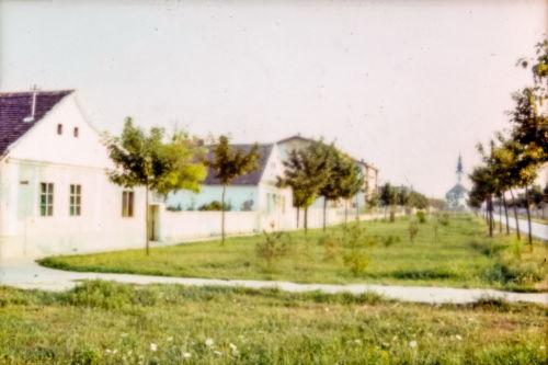 I.L.Ribara od B.Prodanovića ka S.Markovića, leva strana