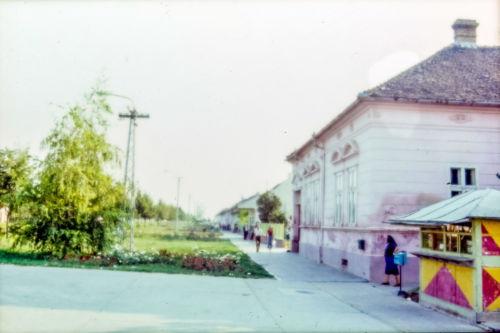 I.L.Ribara od centra ka Ćirpanovoj, desna strana