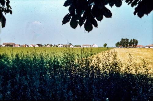 Pogled sa početka staze ka železničkoj, na Ćirpanovu od 29.nov. do govedarstva