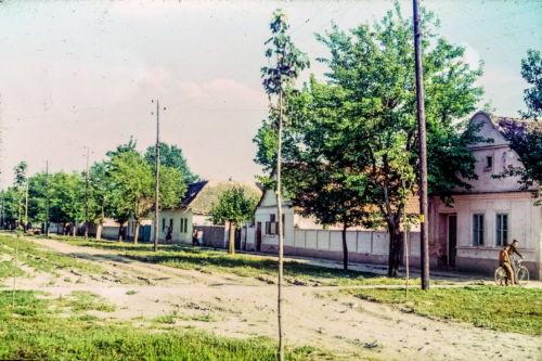 S. Markovića od I.L.Ribara ka Đ.salaja, desna strana (1)