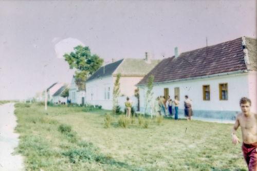 S. Markovića od ul.29 novembra ka Petrovačkoj, desna strana