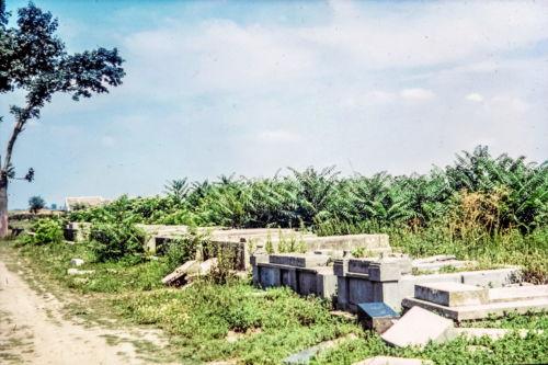 Staro groblje (14)