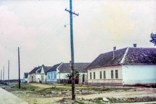 Titova od ul. 29.novembra ka Petrovačkoj, desna strana